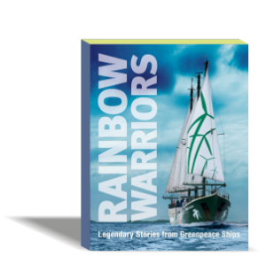 libro_espanol_raibow_warryors_maite_mompo